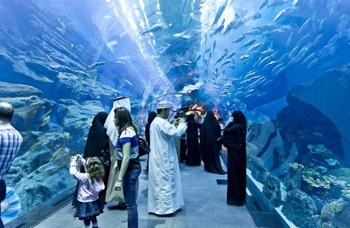 Аквариум в Дубай.