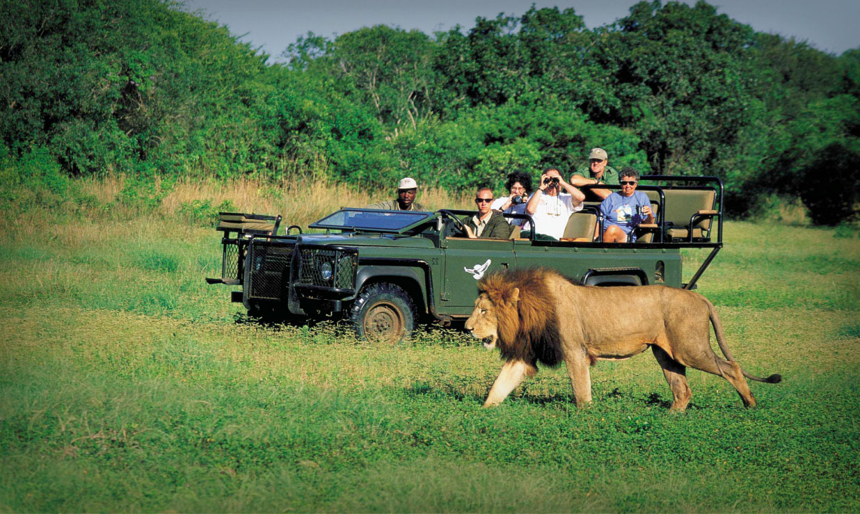 Туризм в Африке