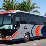 Торревьеха — Аликанте — расписание автобуса