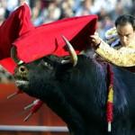 Коррида Испания