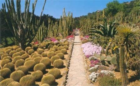 Ботанический сад Пинья-де-Роса
