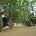 Парк Далмау в Калелье