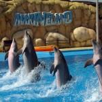 Аквапарк и дельфинарий Маринеленд в Бланес