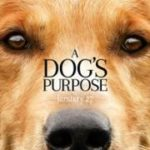 A Dogs Purpose 2017 Online Watch Movie